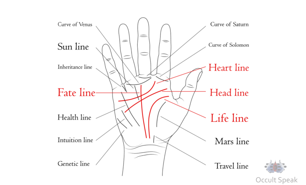 Can Palm Reading predict root cause and time of Death ?