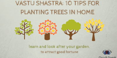 Vastu Shastra: 10 Tips for Planting Trees in Home