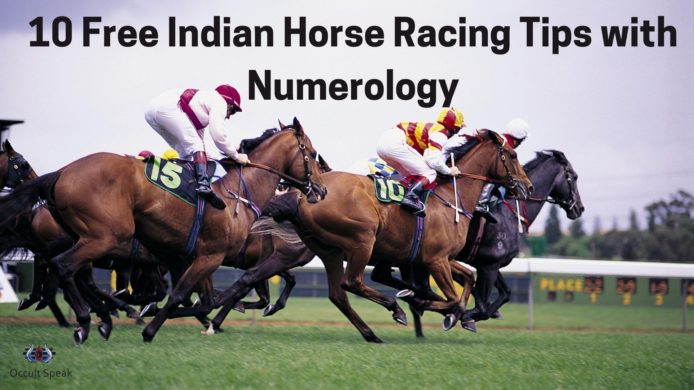 Free Horse Tips