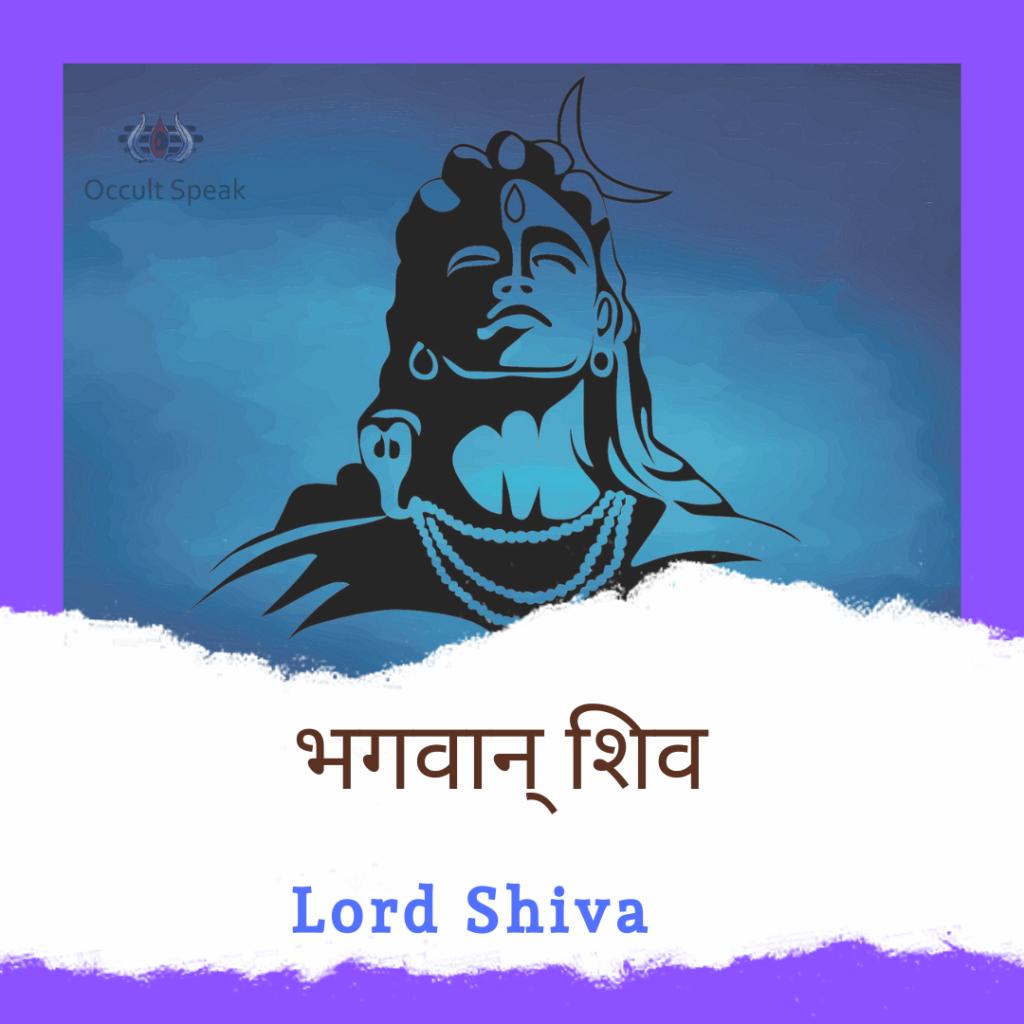 6 Mukhi Rudraksha